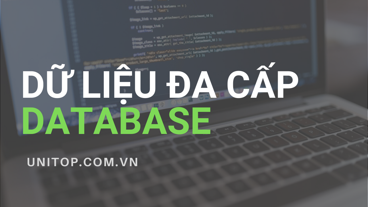 du-lieu-da-cap-database-unitop